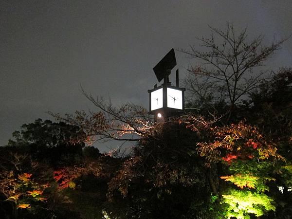 161114-3 清水寺夜間參拜 (7)