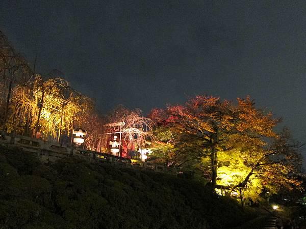 161114-3 清水寺夜間參拜 (8)