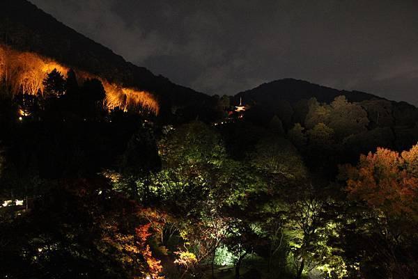 161114-3 清水寺夜間參拜 (20)