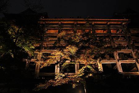 161114-3 清水寺夜間參拜 (45)