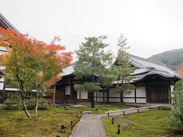 161115-2 高台寺 (14)