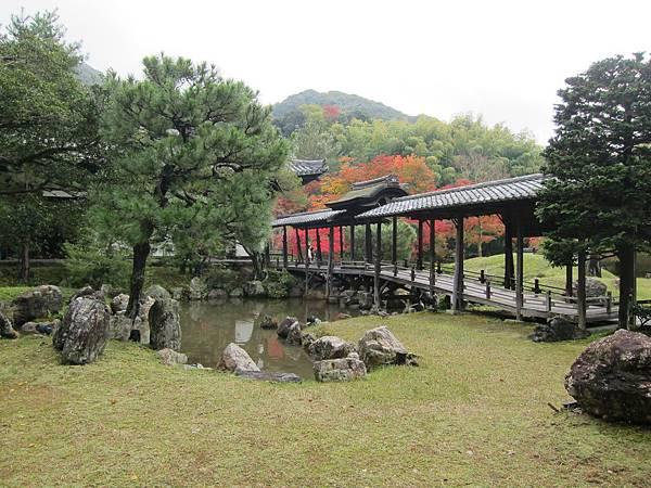 161115-2 高台寺 (19)