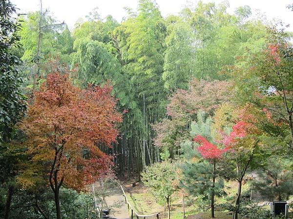 161115-2 高台寺 (56)