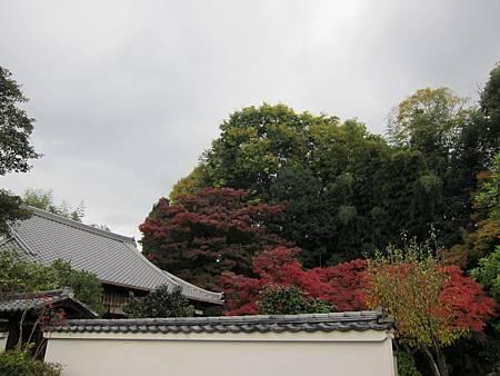 161115-4 三面大黑天 (5)