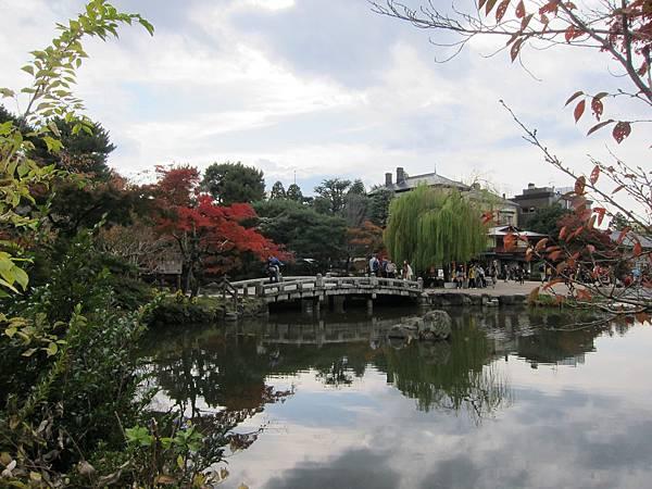 161115-6 円山公園 (2)