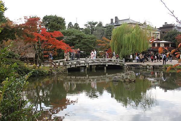 161115-6 円山公園 (3)