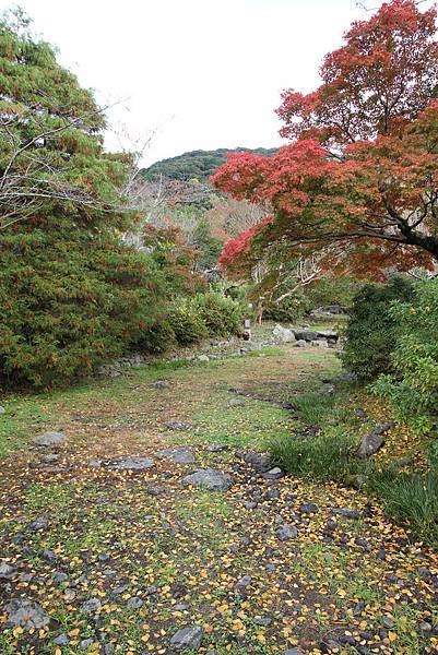 161115-6 円山公園 (7)