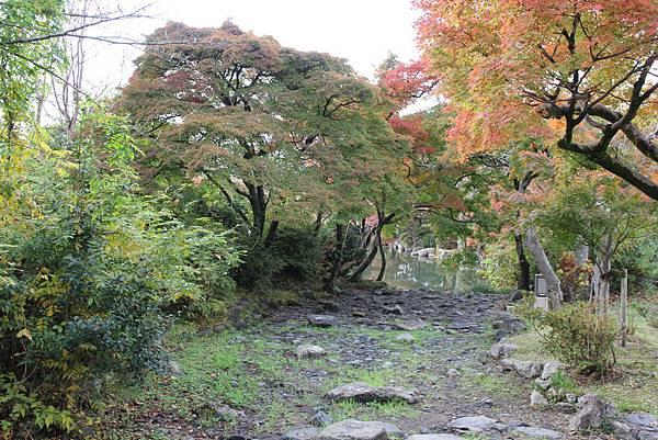 161115-6 円山公園 (10)