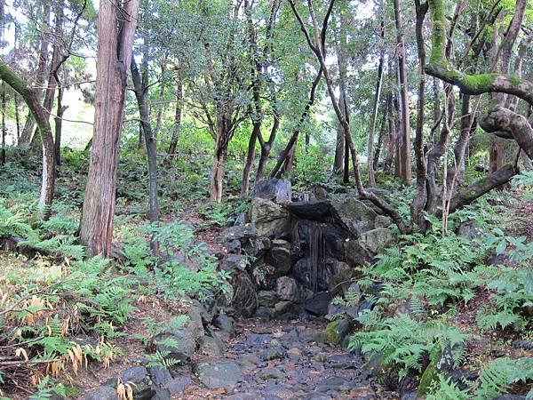 161115-6 円山公園 (19)