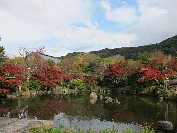 161115-6 円山公園 (28)