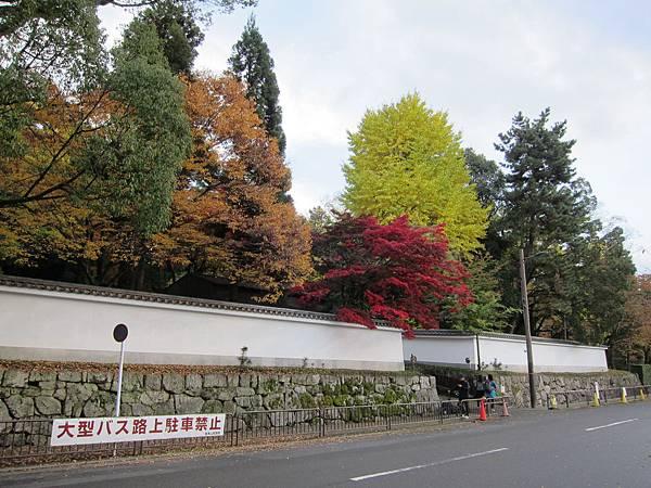 161115-6 円山公園 (34)