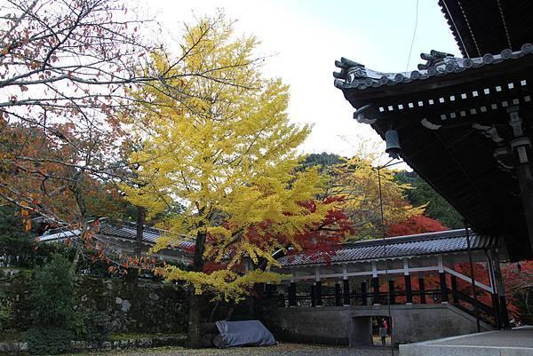 161115-9 南禪寺 (13)