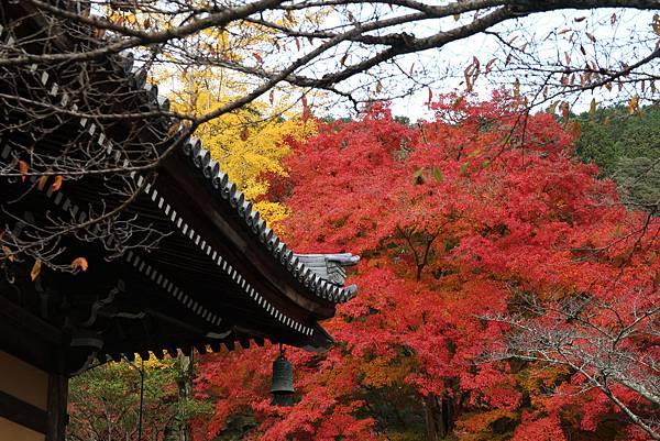 161115-9 南禪寺 (20)