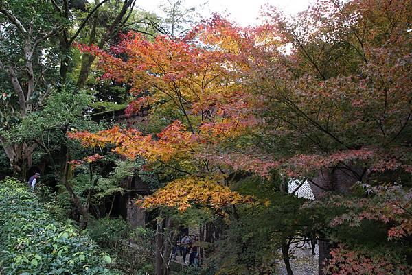 161115-10 南禪寺水路閣 (5)