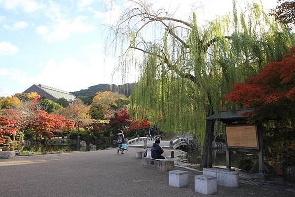 161116-1 円山公園 (3)