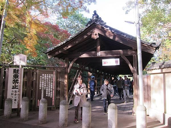 161116-5 東福寺 (10)