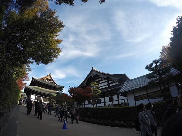 161116-5 東福寺 (11)