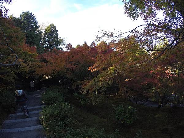 161116-5 東福寺 (22)