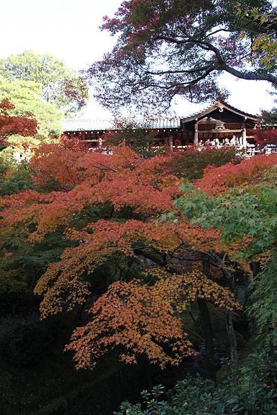 161116-5 東福寺 (31)