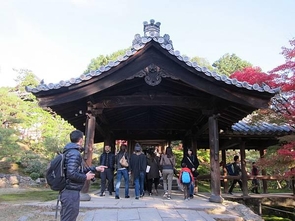 161116-5 東福寺 (51)