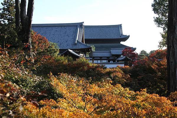 161116-5 東福寺 (52)