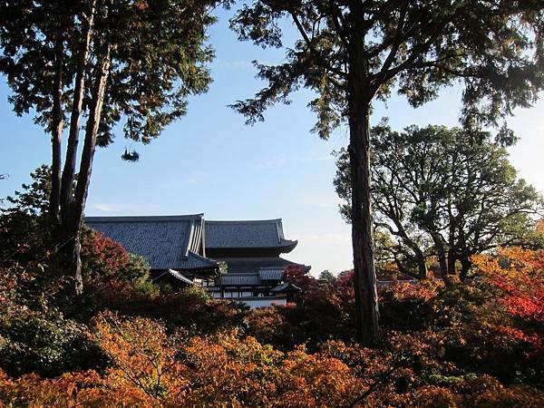 161116-5 東福寺 (53)