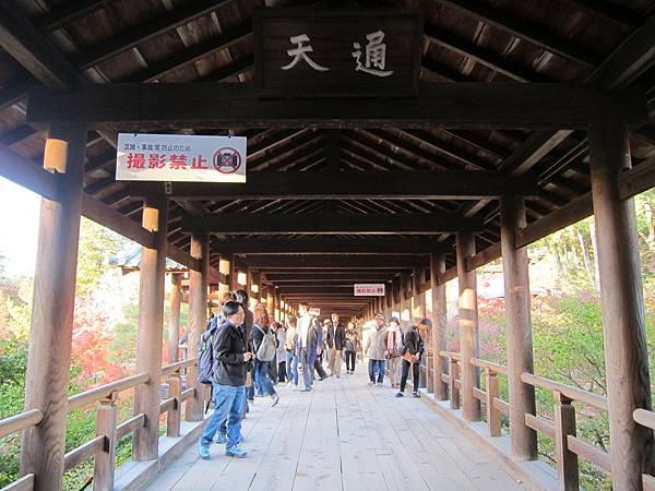 161116-5 東福寺 (72)