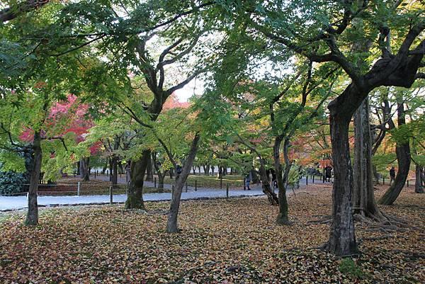 161116-5 東福寺 (73)