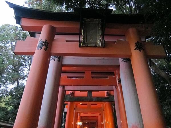 161116-6 伏見稻荷大社 (8)