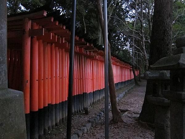 161116-6 伏見稻荷大社 (10)