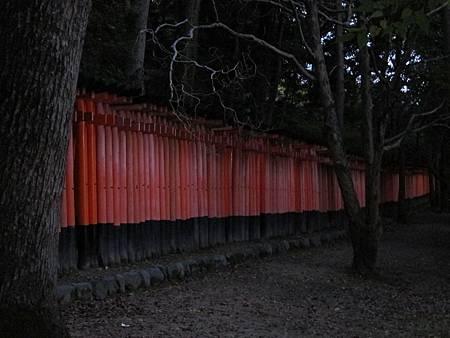 161116-6 伏見稻荷大社 (12)