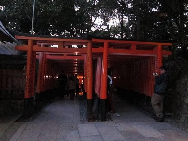 161116-6 伏見稻荷大社 (14)