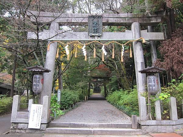 161120-1 山崎蒸溜所 (74)