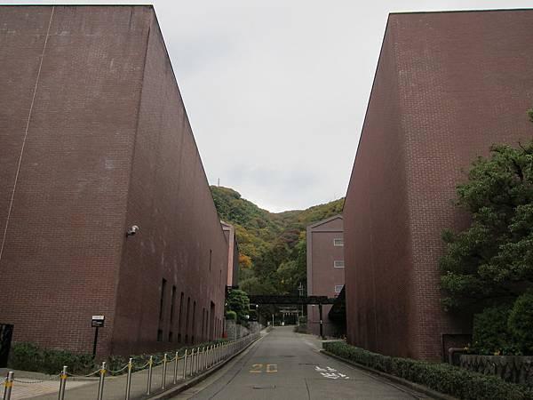 161120-1 山崎蒸溜所 (81)