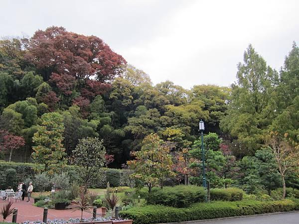 161120-1 山崎蒸溜所 (82)