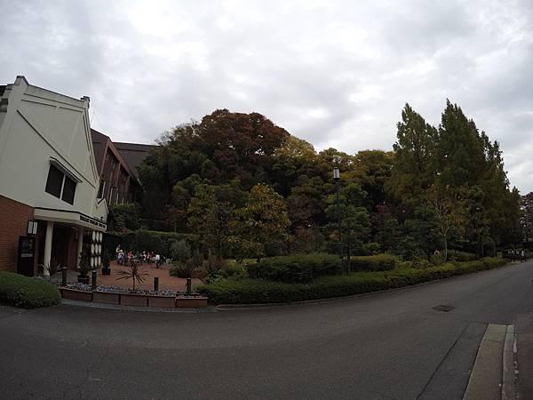 161120-1 山崎蒸溜所 (83)