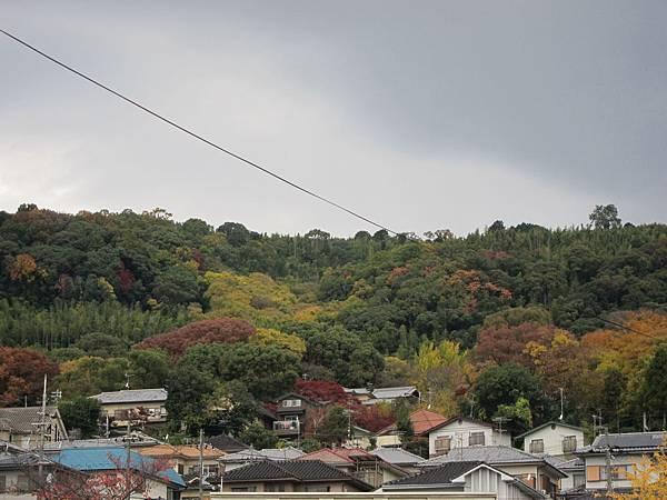 161120-2 JR山崎站 (2)