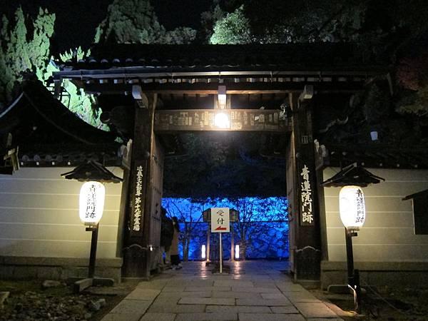 161117-8 青蓮院門跡夜間參拜 (3)
