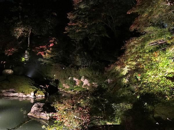 161117-8 青蓮院門跡夜間參拜 (20)