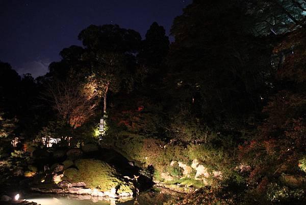 161117-8 青蓮院門跡夜間參拜 (22)