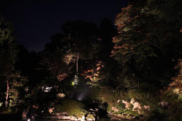 161117-8 青蓮院門跡夜間參拜 (23)