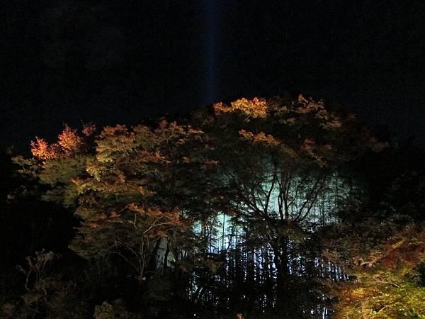 161117-8 青蓮院門跡夜間參拜 (25)