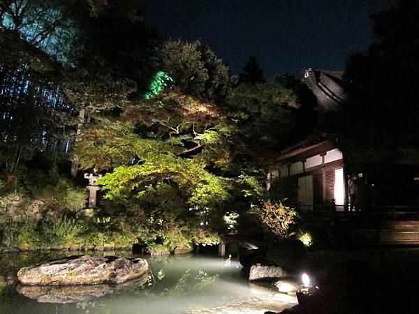 161117-8 青蓮院門跡夜間參拜 (28)