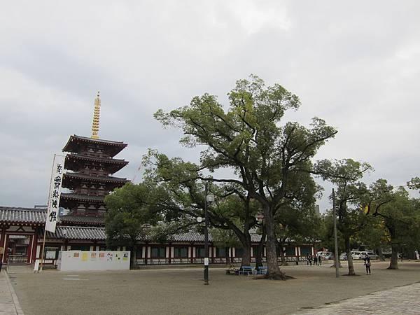 161119-3 四天王寺 (6)