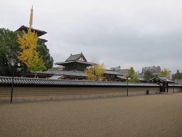 161119-3 四天王寺 (21)