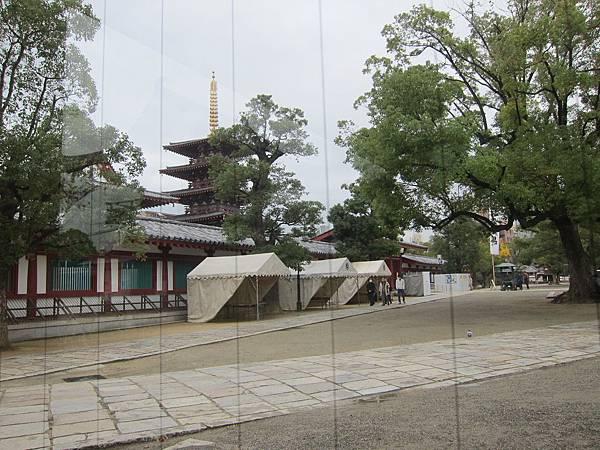 161119-3 四天王寺 (49)