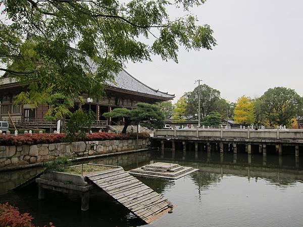 161119-3 四天王寺 (51)