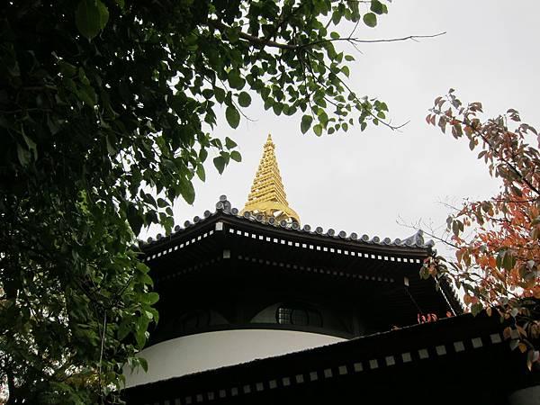 161119-4 一心寺 (6)