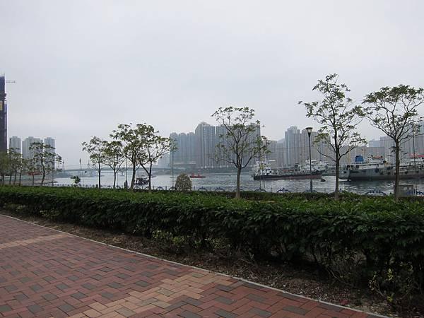 170219-2 荃灣海盛路 (2)