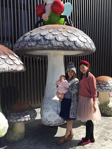 180219-1 菇神鹿谷店 (4)
